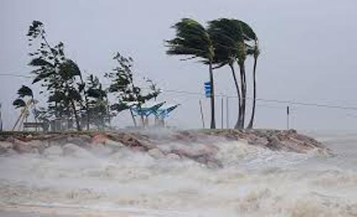 Cyclone Yasi Facts