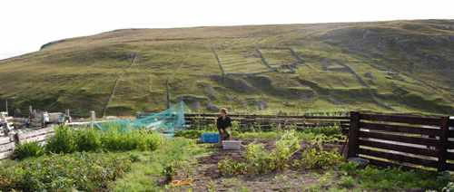 Facts about Crofting