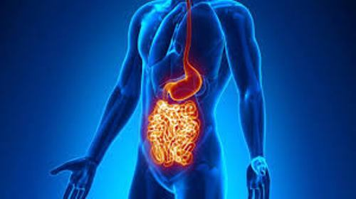Facts about Crohn's Disease