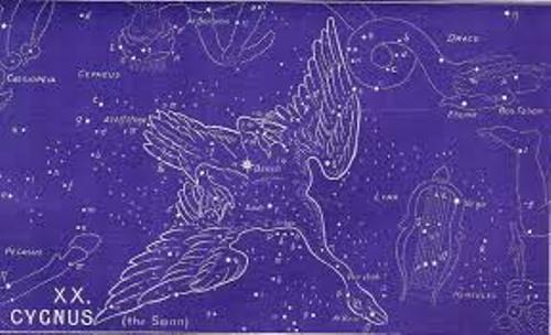 Cygnus Images