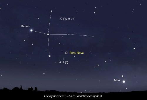 Cygnus Pictures