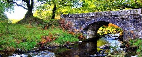 Dartmoor Pictures