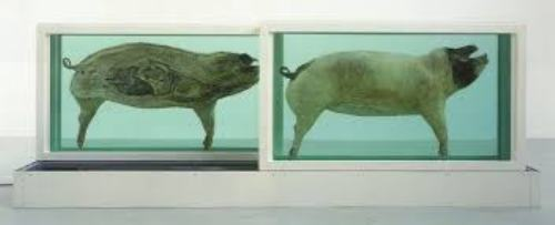 Facts about Damien Hirst Artwork