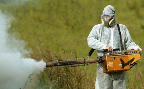 DDT Spray