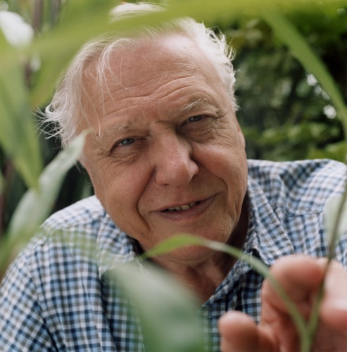 David Attenborough Pictures