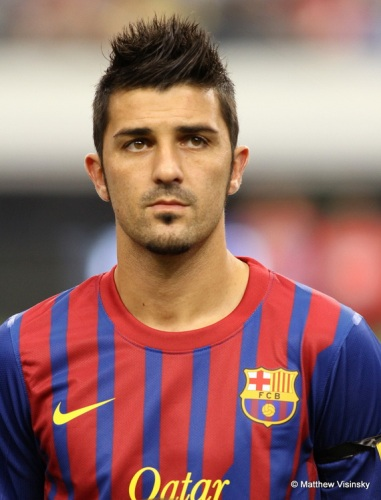 David Villa Facts