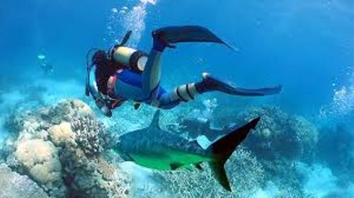 Deep Sea Diving Pic