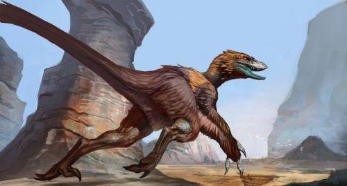 Deinonychus Fur