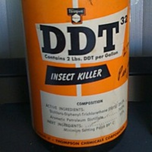 Facts about DDT