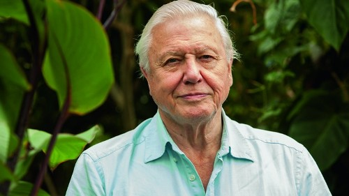 Facts about David Attenborough