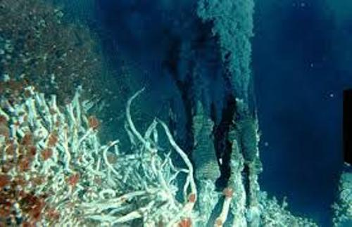 Facts about Deep Sea Vents