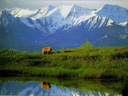Denali National Park facts