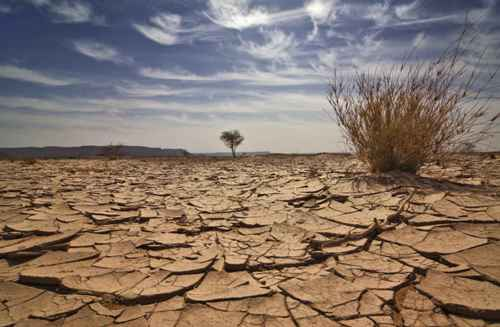 Desert Climate Pictures