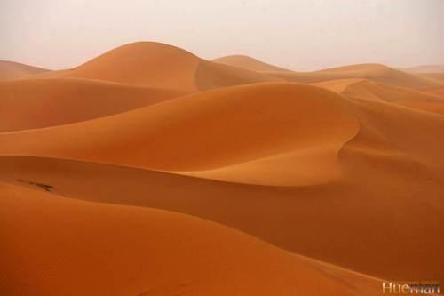 Desert Biome Pic