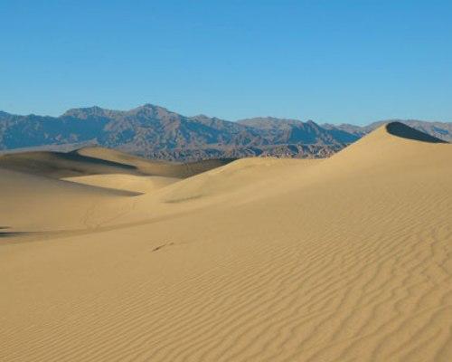 Desert Environments