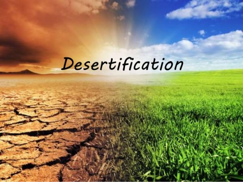 Desertification Images