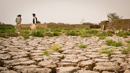 Desertification