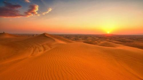 Deserts Pictures
