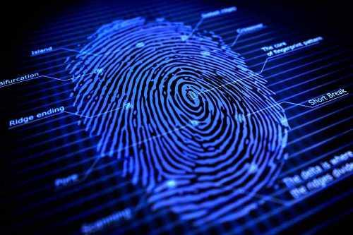 dna fingerprinting facts