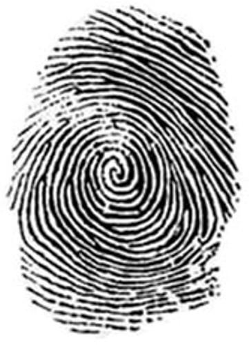dna fingureprinting Short communication multilocus dna fingerprinting in paternity analysis: a  chilean experience lucía cifuentes o1, leonor armanet b2, raúl aguirre.
