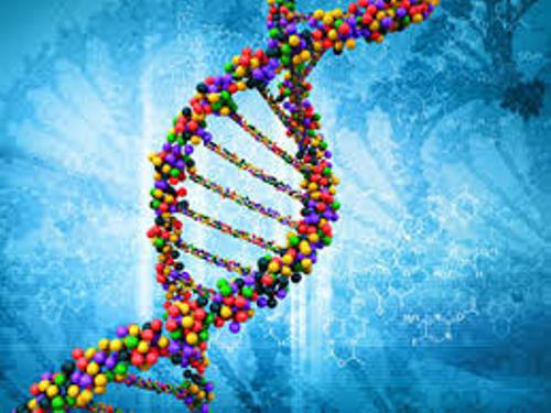dna images