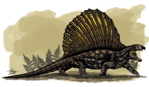 Dimetrodon Pic