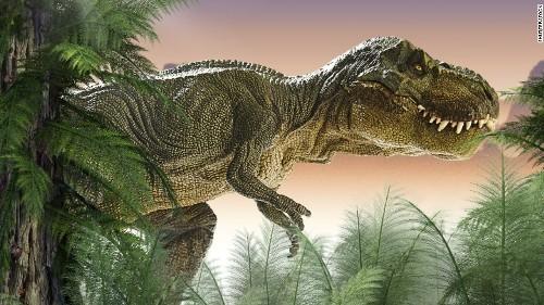 dinosaur pic