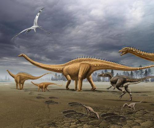 diplodocus images