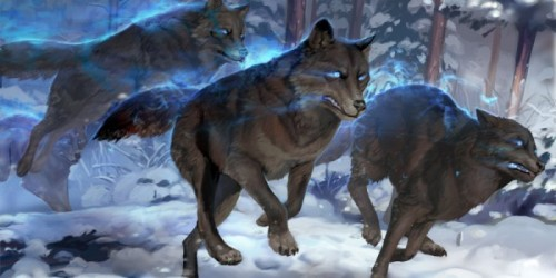 facts about dire wolves