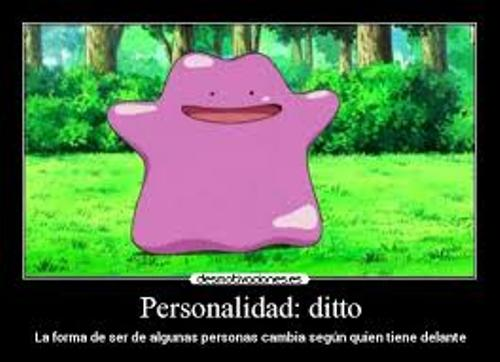 ditto image