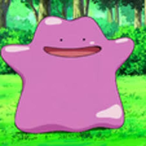 ditto pic