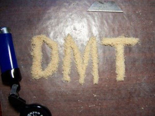 facts about dmt drug