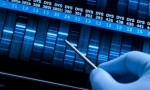 10 Facts about DNA Fingerprinting