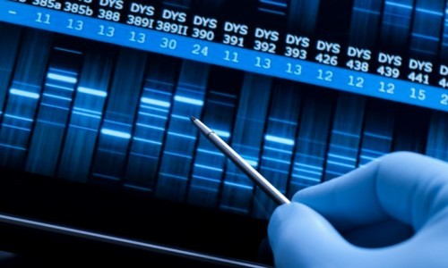 facts about dna fingerprinting