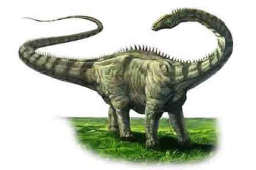 facts about diplodocus