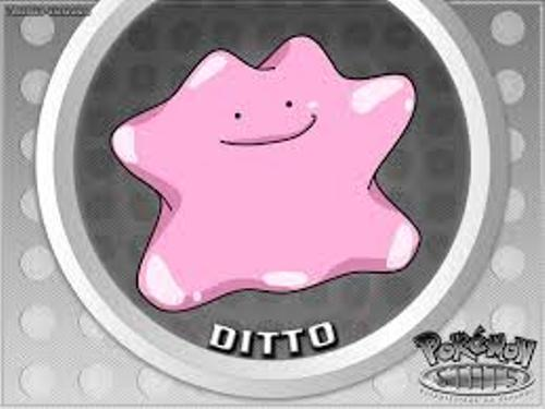 facts about ditto
