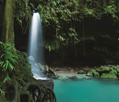 dominica images