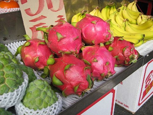dragon fruit facts