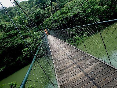 Ecotourism Pic