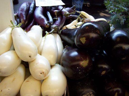Eggplant Facts