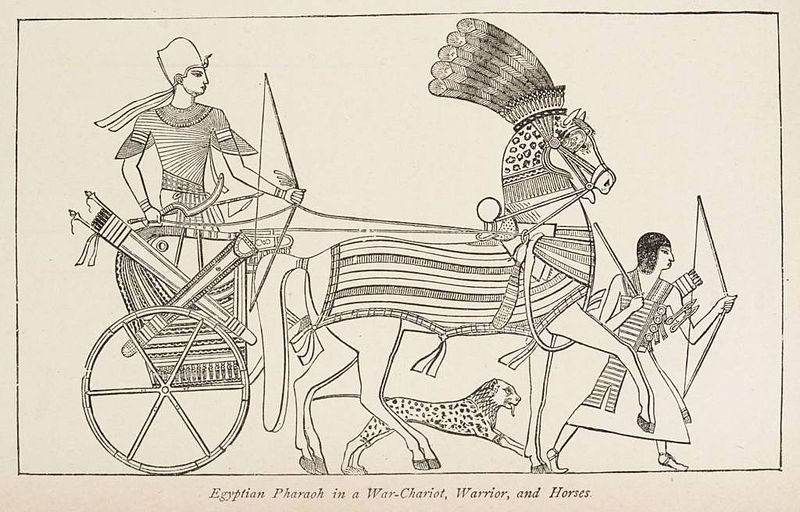 Egyptian Pharaoh in a War Chariot