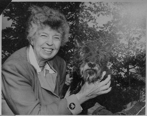 Eleanor Roosevelt Image